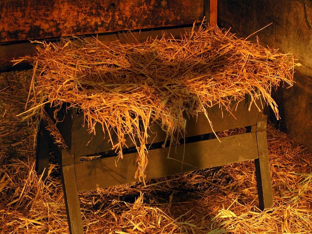cross-in-manger